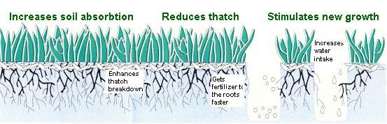 Soil Amendment Services | D & S Lawn Service | 314-968-4300